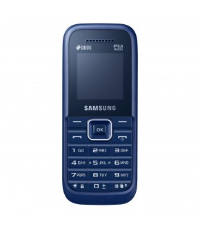 Samsung Guru FM Plus ( B110 E )